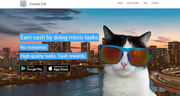 Situs dan Aplikasi Survey Online terbaik  Curious Cat