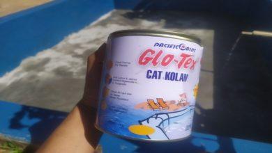 Review Cat Kolam Ikan