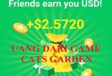 uang cats garden