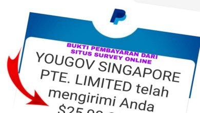 Bukti Pembayaran dari Situs Survey Online Yang Menghasilkan