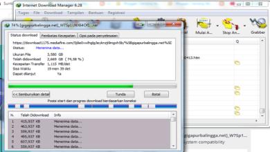 Cara Mengatasi Eror Terjadi Ketika Download di IDM