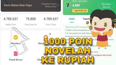 1000 Poin Aplikasi Novelah Berapa Rupiah
