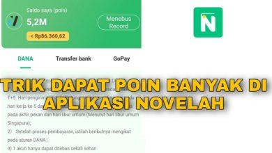 Trik Nuyul Poin di Aplikasi Novelah Aman dan Membayar